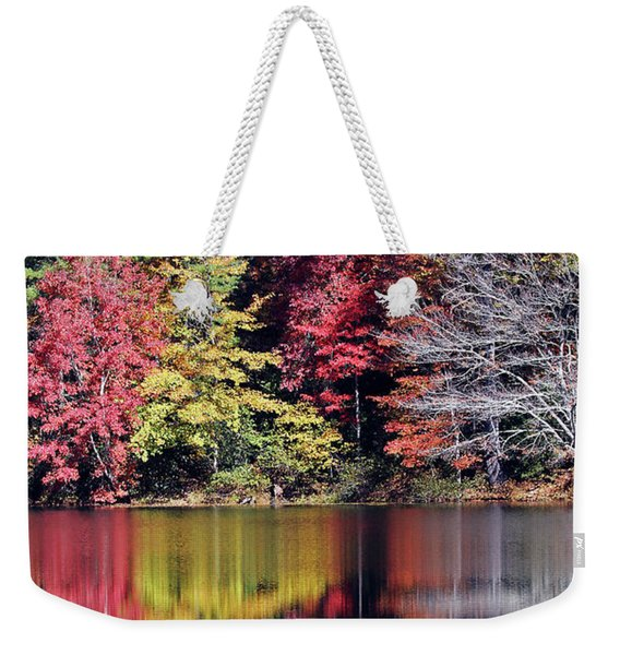 Reflections Of A Bare Tree Weekender Tote Bag