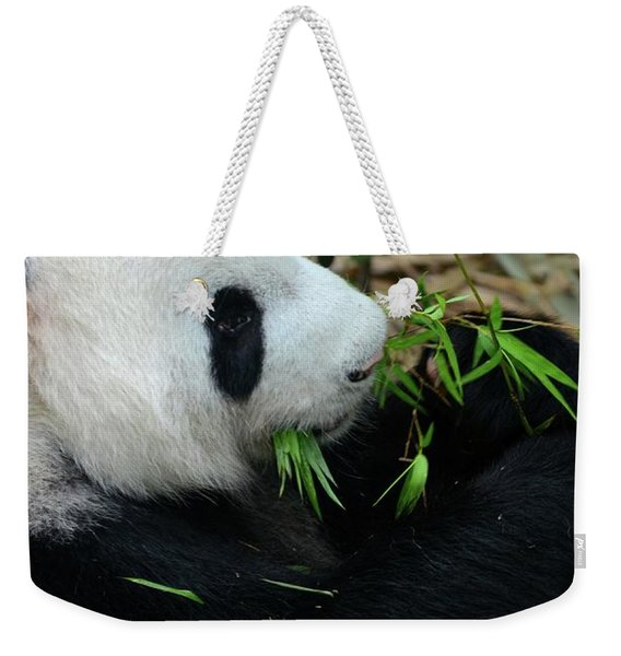 Relaxed Panda Bear Eats With Green Leaves In Mouth Weekender Tote Bag