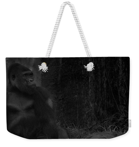 Reminiscent Of Home Weekender Tote Bag