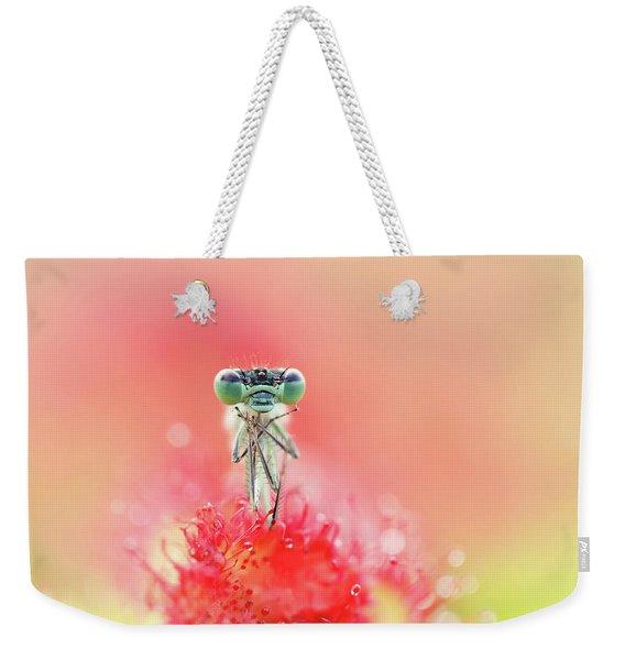 Resignation - Damselfly In Sundew Weekender Tote Bag