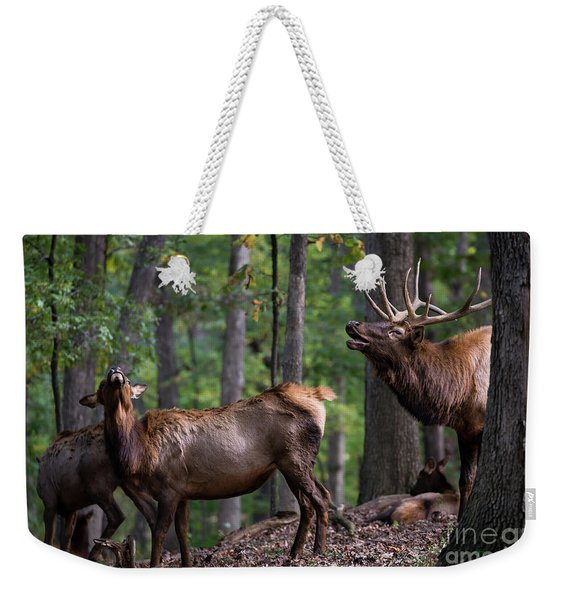 Responding To The Call Weekender Tote Bag