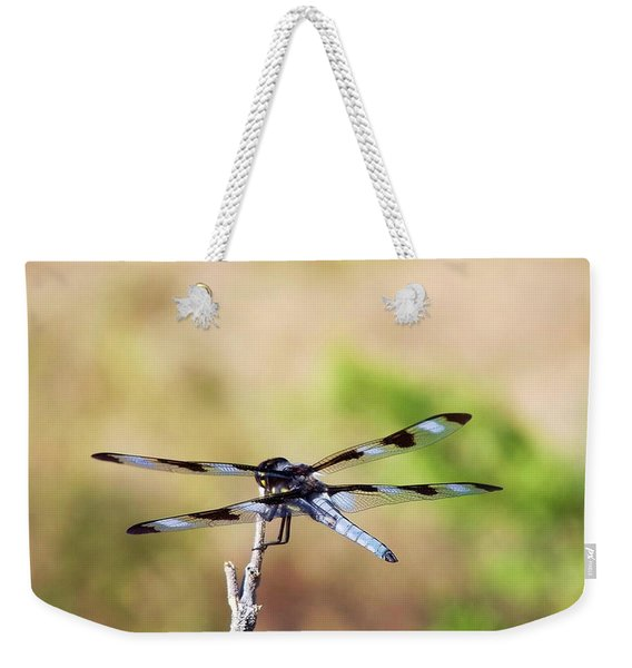 Rest Area, Dragonfly On A Branch Weekender Tote Bag