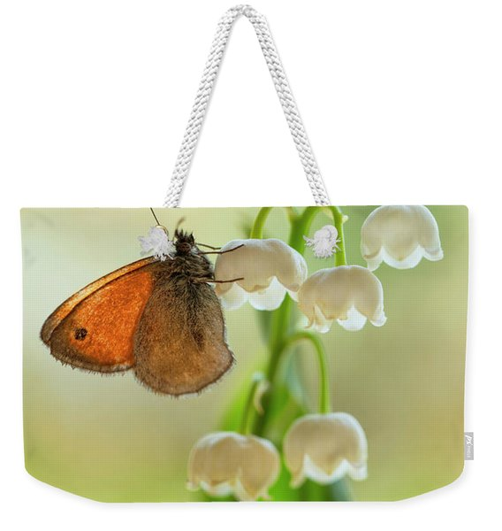 Weekender Tote Bag featuring the photograph Rest In The Morning Sun by Jaroslaw Blaminsky