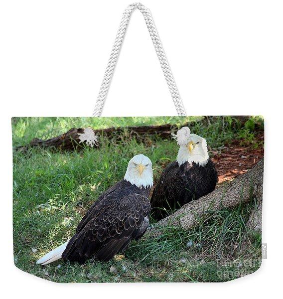 Resting Bald Eagles Weekender Tote Bag
