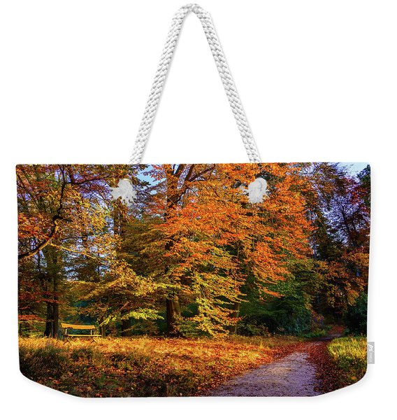 Weekender Tote Bag featuring the photograph Resting Place In An Autumn Park by Dmytro Korol