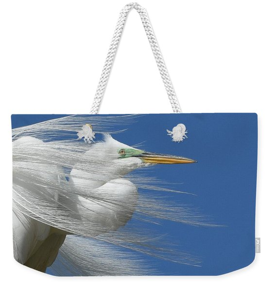 Restless Wind 3 Weekender Tote Bag