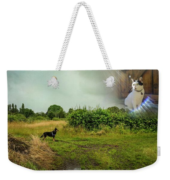 Weekender Tote Bag featuring the photograph Rex Discovers Saint Peter Is A Cat by Mary Lee Dereske