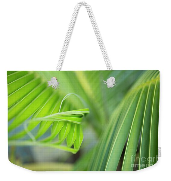 Weekender Tote Bag featuring the photograph Rhythm Of A Palm Frond by Charmian Vistaunet