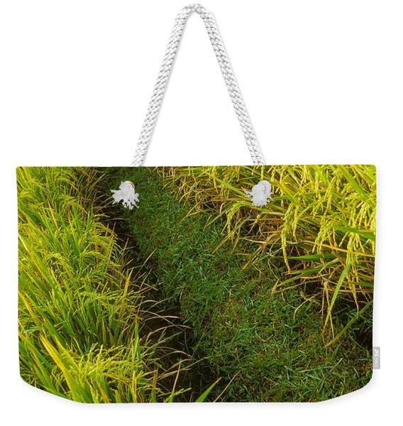 Rice Field Hiking Weekender Tote Bag