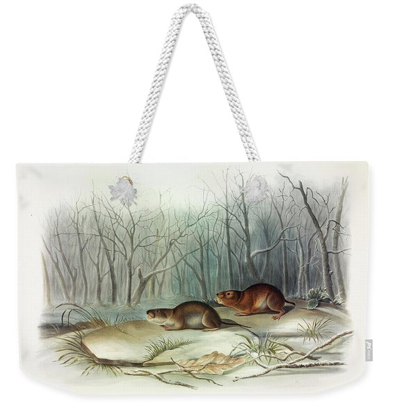 Richardson's Meadow Mouse Weekender Tote Bag