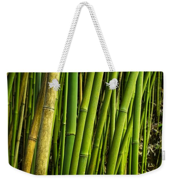 Road To Hana Bamboo Panorama - Maui Hawaii Weekender Tote Bag