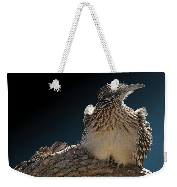 Roadrunner On A Log Weekender Tote Bag