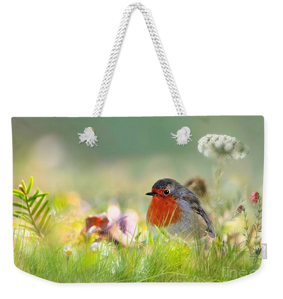 Robin Red Breast Weekender Tote Bag