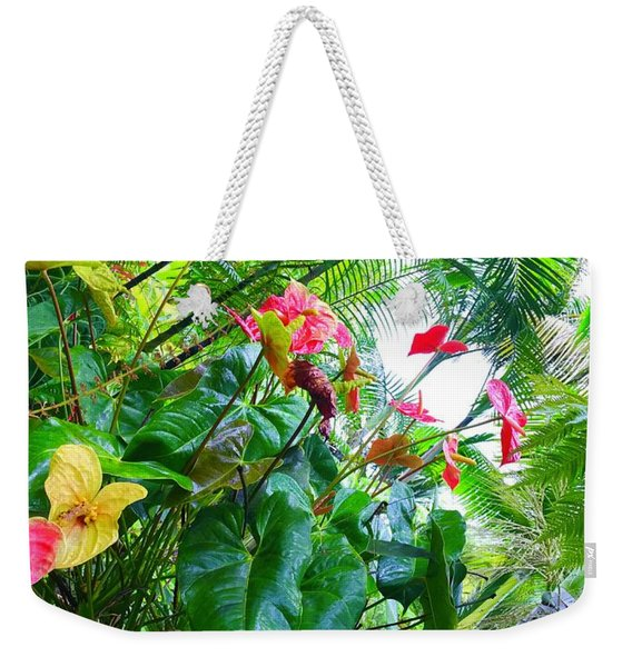 Robins Garden With Anthuriums And Ferns Weekender Tote Bag