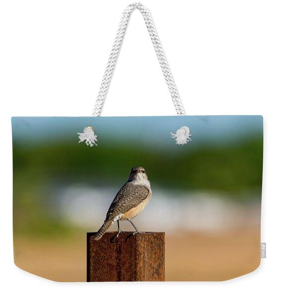 Rock Wren 1 Weekender Tote Bag