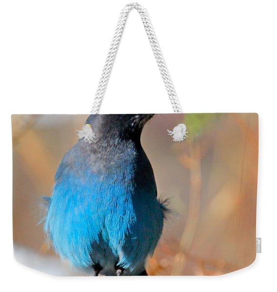 Rocky Mountain Steller's Jay Weekender Tote Bag