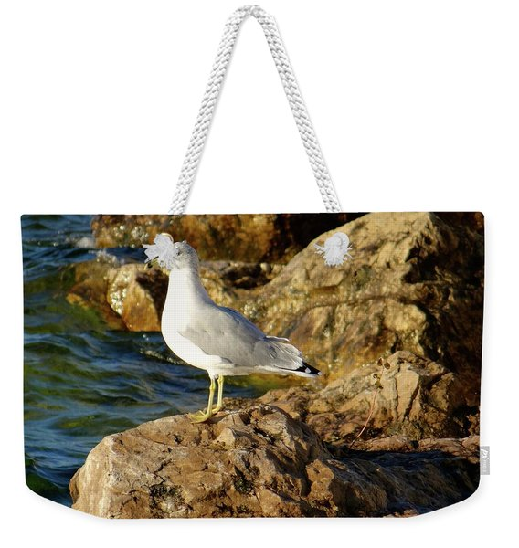 Rocky Waters Weekender Tote Bag