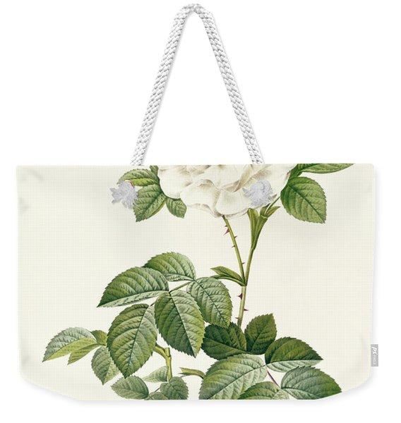 Rosa Alba Flore Pleno Weekender Tote Bag