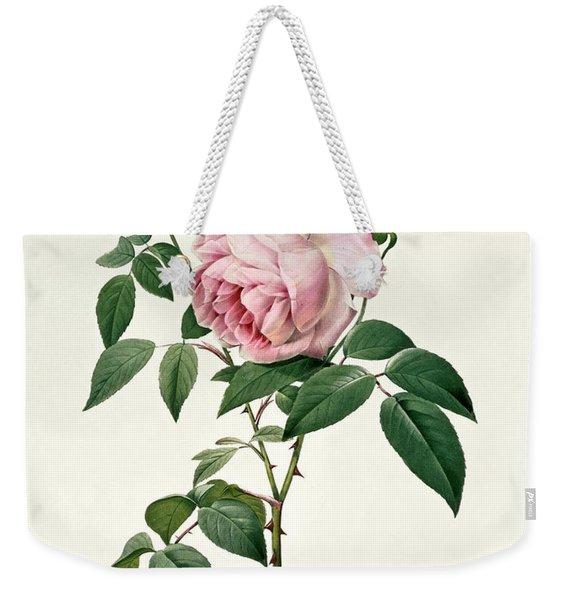 Rosa Chinensis And Rosa Gigantea Weekender Tote Bag