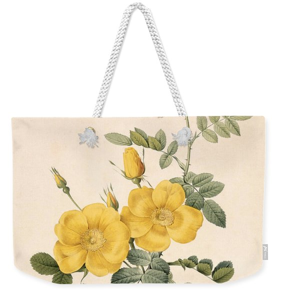 Rosa Eglanteria Weekender Tote Bag