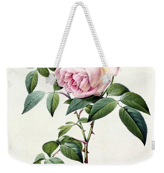 Rosa Indica Fragrans Weekender Tote Bag