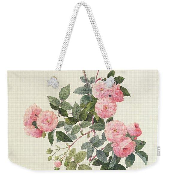 Rosa Multiflora Carnea Weekender Tote Bag
