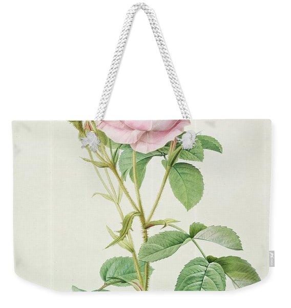 Rosa Muscosa Multiplex Weekender Tote Bag
