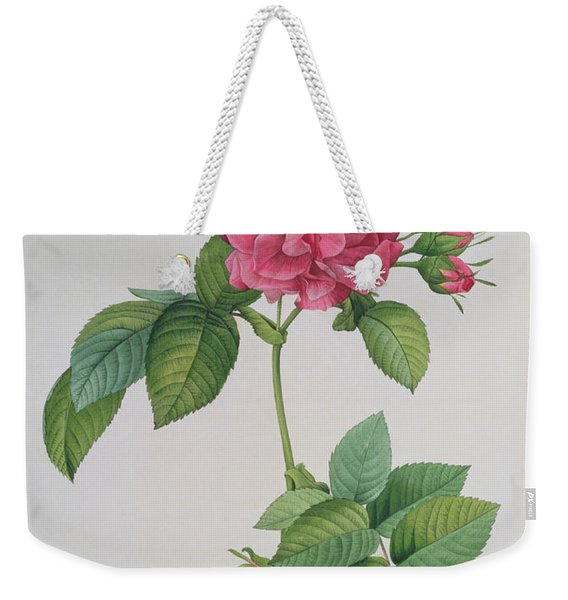 Rosa Turbinata Weekender Tote Bag
