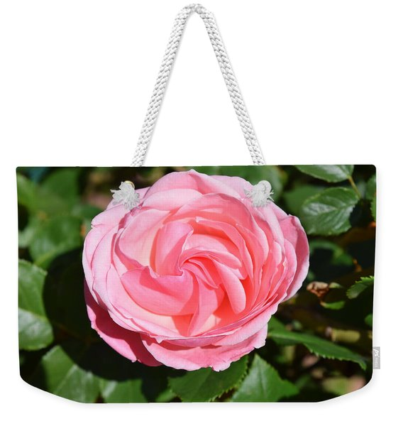 Weekender Tote Bag featuring the photograph Rose Flower by Margarethe Binkley
