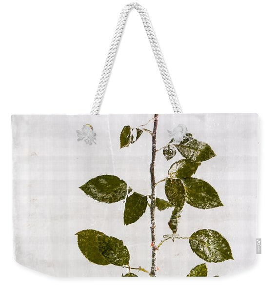 Weekender Tote Bag featuring the photograph Rose Frozen Inside Ice by John Wadleigh