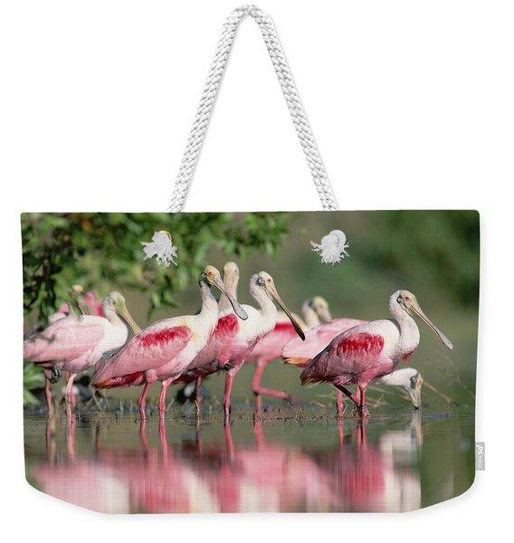 Roseate Spoonbill Flock Wading In Pond Weekender Tote Bag