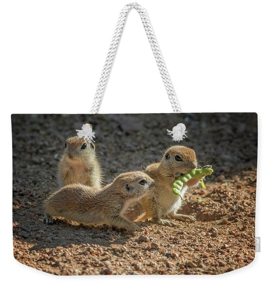 Round-tailed Ground Squirrels 1198 Weekender Tote Bag