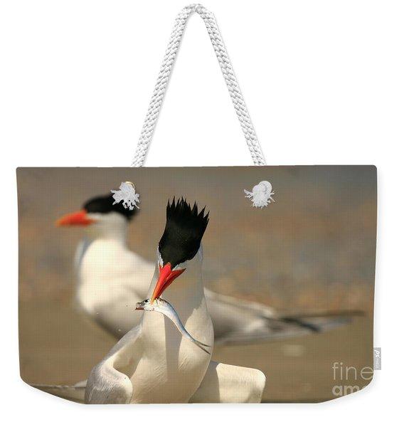 Royal Tern Catch Weekender Tote Bag
