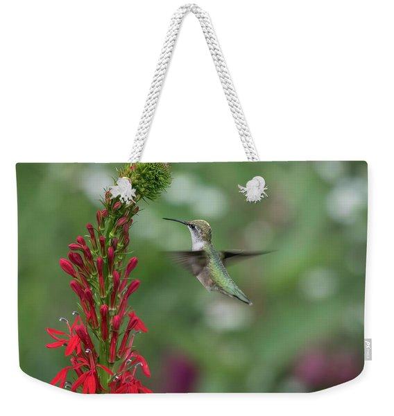 Ruby Throated Hummingbird 2016-4 Weekender Tote Bag