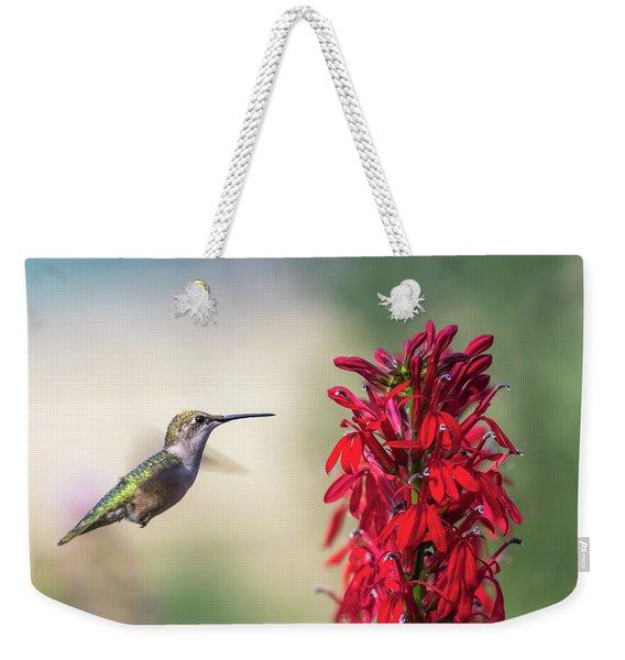 Ruby Throated Hummingbird 2017-2 Weekender Tote Bag