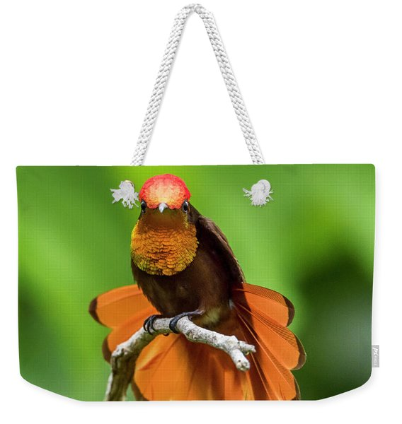 Weekender Tote Bag featuring the photograph Ruby's Glory by Rachel Lee Young
