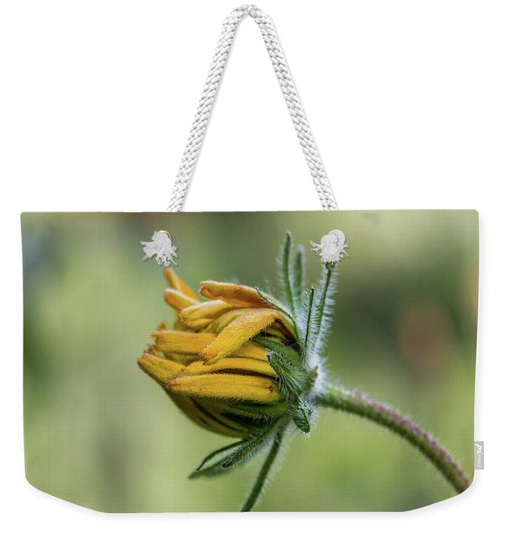 Weekender Tote Bag featuring the photograph Rudbeckia Fuzzy Bud by Patti Deters