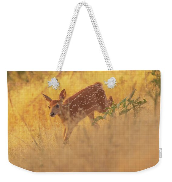 Weekender Tote Bag featuring the photograph Running In Sunlight by John De Bord