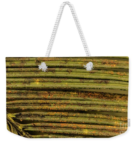 Rusted Fern Weekender Tote Bag
