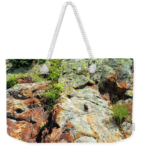 Weekender Tote Bag featuring the photograph Rusty Rock Face by Ron Cline