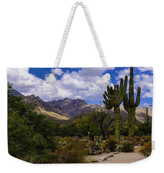 Sabino Canyon No4 Weekender Tote Bag