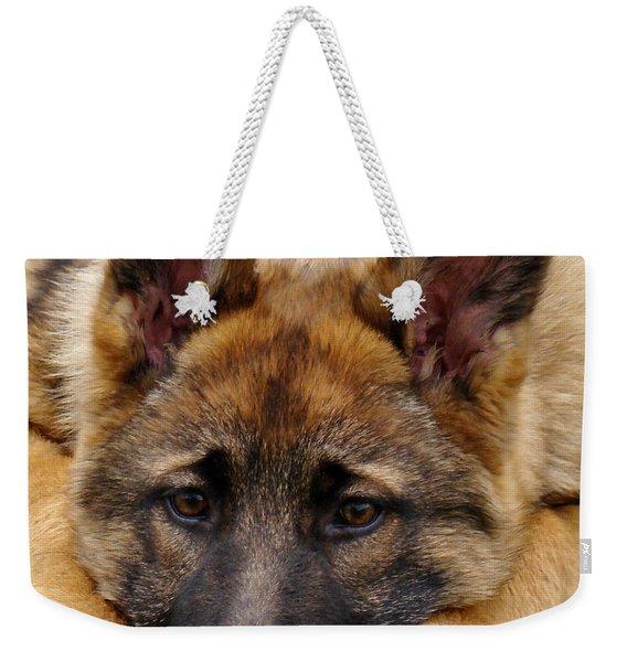 Sable German Shepherd Puppy Weekender Tote Bag