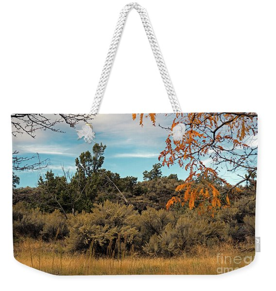 Sagebrush And Lava Weekender Tote Bag