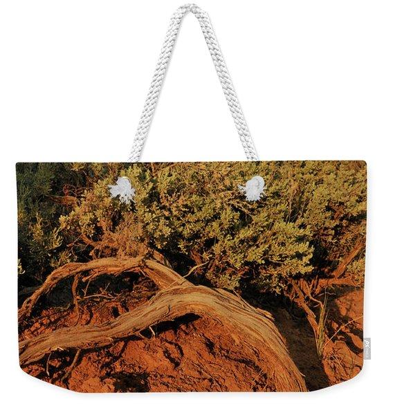 Sagebrush At Sunset Weekender Tote Bag