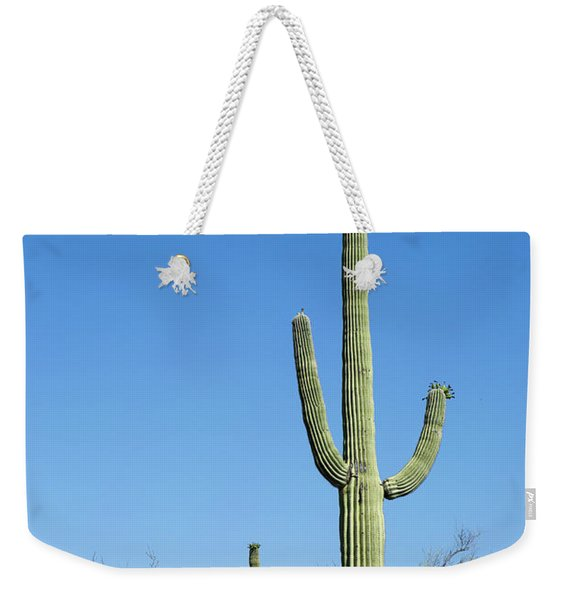 Saguaro National Park Arizona Weekender Tote Bag