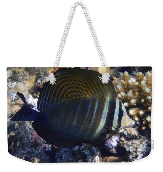 Sailfin Tang  Weekender Tote Bag