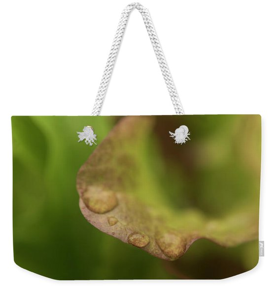 Weekender Tote Bag featuring the photograph Salad Leaves 001 by Clayton Bastiani