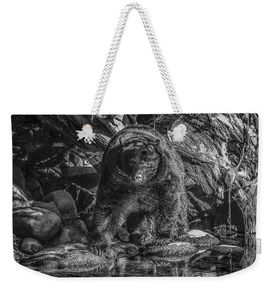 Salmon Seeker Black Bear  Weekender Tote Bag