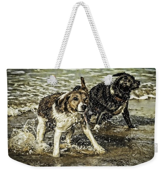 Weekender Tote Bag featuring the photograph Salt And Shake by Nick Bywater