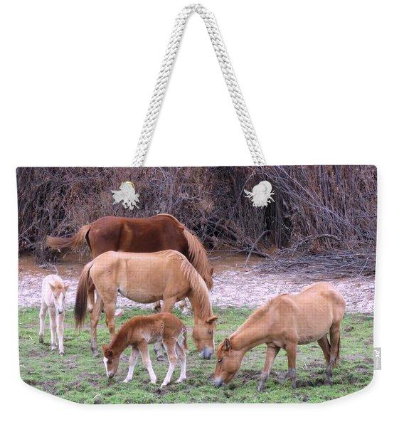 Salt River Wild Horses In Winter Weekender Tote Bag